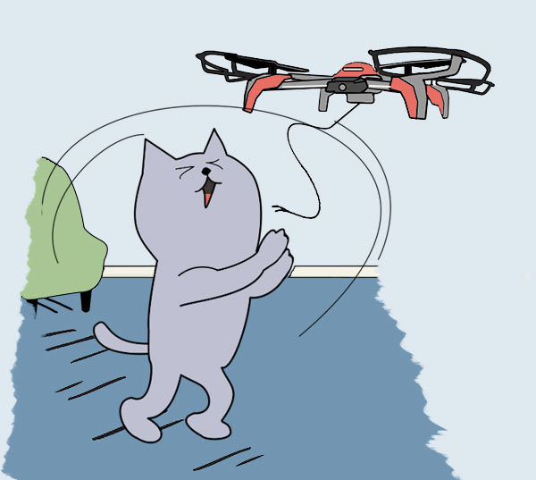 fit cat playing with drone